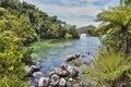 Abel Tasman natural park, New Zealand Royalty Free Stock Photo