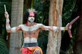 Aboriginal culture show in Queensland Australia Royalty Free Stock Photo