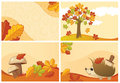Abstract autumn backgrounds Stock Photo