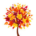 Abstract autumn tree. Vector illustration. Royalty Free Stock Photo