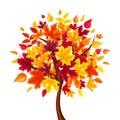 Abstract autumn tree. Vector illustration. Royalty Free Stock Photo