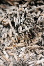 Abstract background of ash Royalty Free Stock Photo