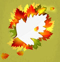 Abstract background with autumn leaves Stock Image