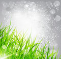 Abstract background bright: the grass on a gray Stock Image