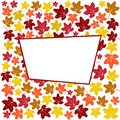 Abstract background with colorful autumn maple leaves and white frame. Vector illustration