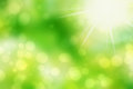 Abstract background green and fresh bokeh Stock Photos
