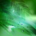 Abstract background green leaves and water drops.vector background Royalty Free Stock Photo