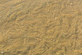 Abstract background of sand ripples under clear water at the bea Royalty Free Stock Photo