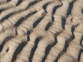 Abstract background texture of sand with ridged ripples formed by the action of the water in a full frame pattern for marine or va Royalty Free Stock Photo