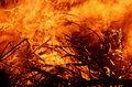 Abstract background wild flames of bush fire Royalty Free Stock Photo