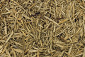 Abstract background wood mulch chips Royalty Free Stock Photo