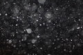 Abstract black white snow texture on black background Royalty Free Stock Photo