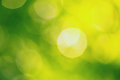 Abstract blurry green background yellow color Royalty Free Stock Photo