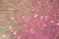 Abstract bokeh of light burst light painting Royalty Free Stock Image