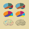Abstract brain symbol set different type Royalty Free Stock Images