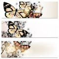 Abstract brochures set in floral style with butterflies of flowers and for design Royalty Free Stock Image
