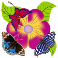 Abstract butterfly against a flower. Royalty Free Stock Photo