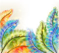 Abstract clear background with colorful vector ferns Stock Photography
