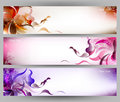 Abstract colorful butterfly and flower vector background Royalty Free Stock Photo