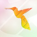 Abstract colorful hummingbird symbol illustration Royalty Free Stock Photography