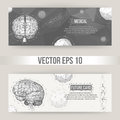 Abstract Creative concept vector background of the human brain. Polygonal design style letterhead and brochure for