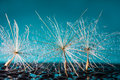 Abstract dandelion flower with water drops background Royalty Free Stock Photo