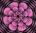 Abstract dark pink vector flower pattern, shape in fractal style on black background Royalty Free Stock Photo