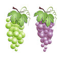 Abstract decorative green red grapes Royalty Free Stock Photography