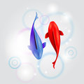 Abstract decorative red and blue fish Royalty Free Stock Images