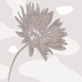 Abstract desaturated flower on spotty background Stock Image
