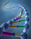 Abstract DNA Chains Stock Images