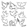 Abstract dove sketch set vector illustration flying collection cartoon Stock Photos