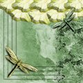 Abstract dragonfly wallpaper d background Stock Image