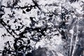 Abstract expressionism pattern. Style of drip painting. Black an