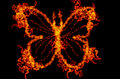 Abstract fire butterfly illustration isolated on black background Stock Photography
