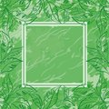 Abstract floral background green contour leaves frame and grunge pattern Royalty Free Stock Image