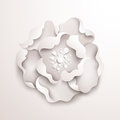 Abstract floral background white paper flower vector design Royalty Free Stock Images