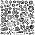 Abstract Floral Design Elements Vectors Stock Image