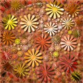 Abstract floral design patterns Royalty Free Stock Photo