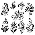 Abstract floral patterns silhouettes set black contour on white background Royalty Free Stock Photos