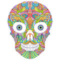 Abstract  floral skull on white background. Royalty Free Stock Photo