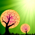 Abstract floral trees on green burst light Royalty Free Stock Photo