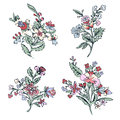 Abstract flower set, fantasy colorful blossom, doodle plants. For the design of prints, fabrics, tattoo, decoration