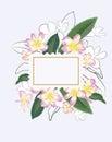 Abstract flower spring illustration