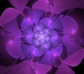 Abstract Fractal Purple Flower