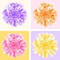Abstract futuristic background, four aster flowers in pop art style Royalty Free Stock Photo