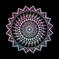 Abstract Gradient Pastel Mandalas on Isolated Black Background