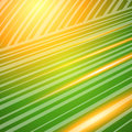 Abstract graphic design background light blur lines11
