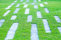 Abstract grass background with concrete pathway. Royalty Free Stock Photo
