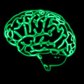 Abstract green brain Royalty Free Stock Image